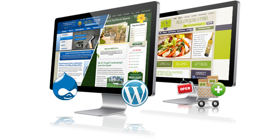 Web Sites & Applications